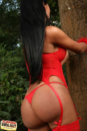 Shamsia escorts in Lackawanna, NY